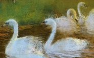 LaTouche The Lovers And The Swans 184x114
